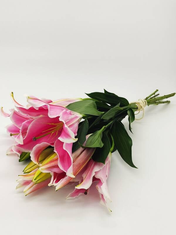 Oriental lilies 1